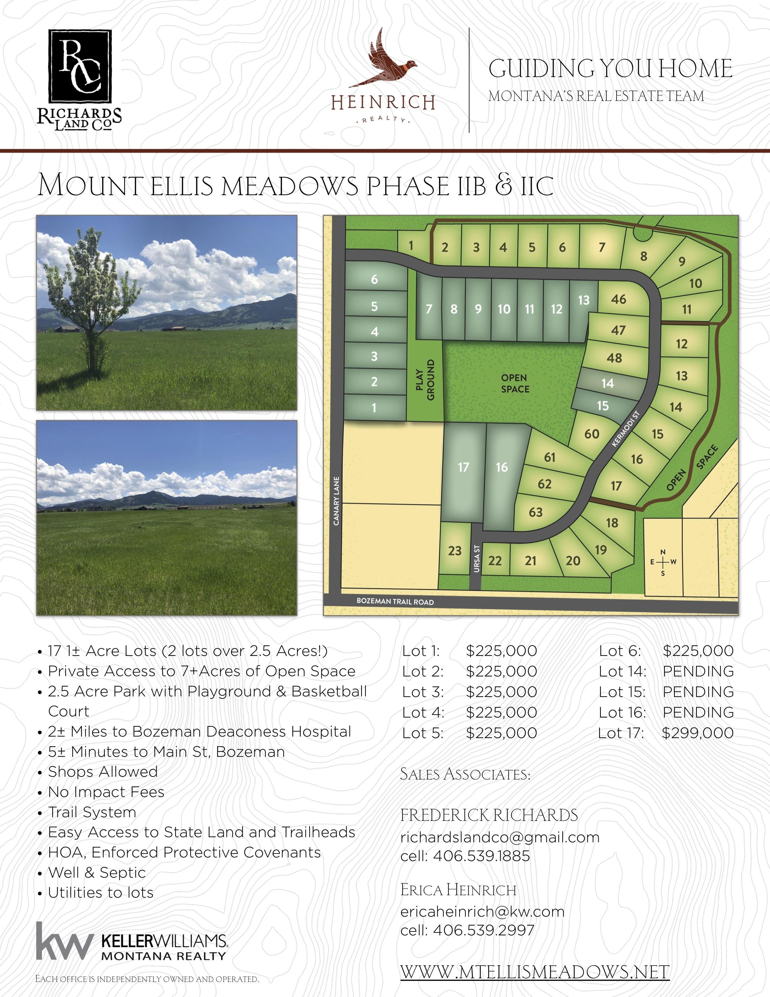 Mt-Ellis-Flyer-for-Subdivision-jpg.jpg#asset:174